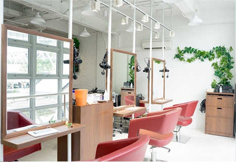 from $208.65 (U.P. from $222.55) for Haircut + Color + OLAPLEX Treatment and Free Soda Spa or Teeth Whitening(15mins - Half Session)
